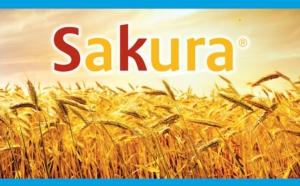 sakura-sumitomo-20160325