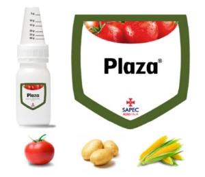 sapec-plaza-logo-2016