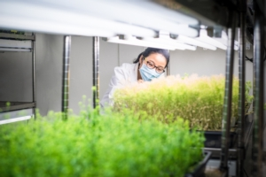 scienziato-scienziata-laboratorio-piante-ricerca-biostimolanti-by-sinitar-fotolia-750