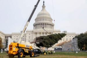 Jcb solleva l'albero di Natale a Capitol Hill
