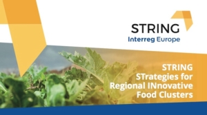 string-interreg-europe
