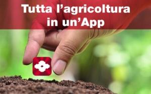 sumitomo-app