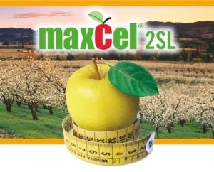 sumitomo-maxcel-2sl-apertura
