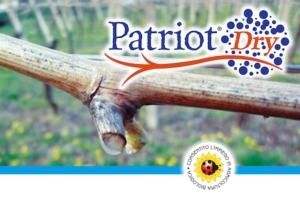 sumitomo-patriot-dry-logo