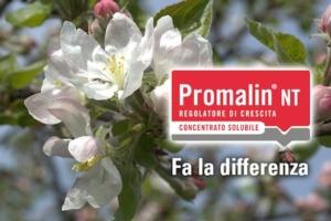 sumitomo-promalin-nt-2016