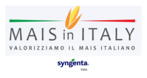 syngenta-mais-in-italy1