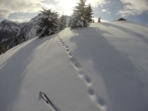 tanta-neve-alpi-stefano-guerra-dolomiti-piste-da-sci