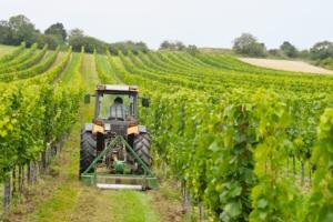 trattore-trattori-macchine-agricole-vigneto-generico-by-ewald-froch-fotolia-750