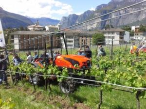 Viticoltura, macchine alternative al diserbo: obiettivo sostenibilità