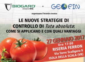 Le nuove strategie di controllo di Tuta absoluta: come si applicano e con quali vantaggi