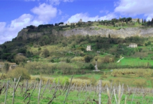 umbria-campagna-paesaggio-orvieto-by-matteo-giusti-agronotizie-jpg