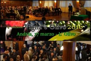"""""""Vigna e olivo 2016"""", è di scena l'olivicoltura"""