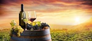 vino-bottiglia-bicchieri-botte-paesaggio-tramonto-by-romolo-tavani-fotolia-750