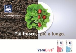 yara-liva-apertura
