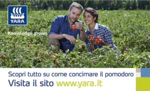 yara-redazionale-pomodoro-maturazione-201606-750