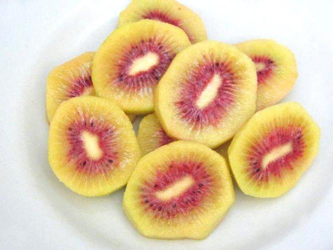 Kiwi rosso summerfruit presenta enza redtm agronotizie for Kiwi giallo piante acquisto