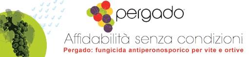 20100324_Cop04_Pergado