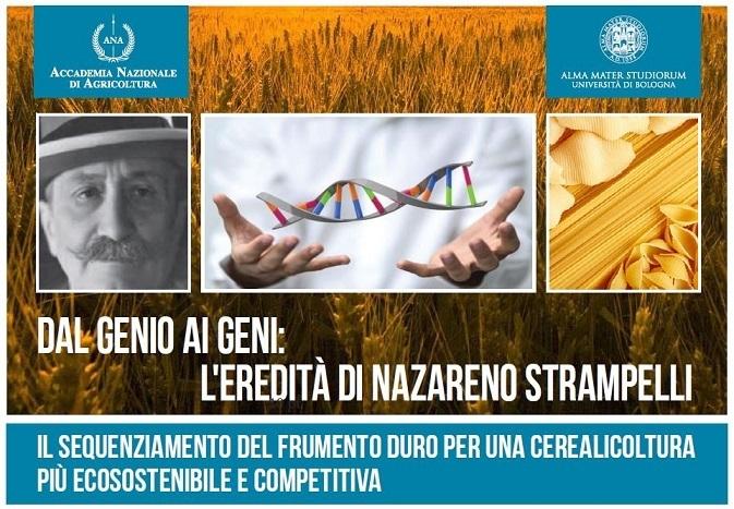 20161202-sequenziamento-frumento-duro-cerealicoltura-ecosostenibile-competitiva