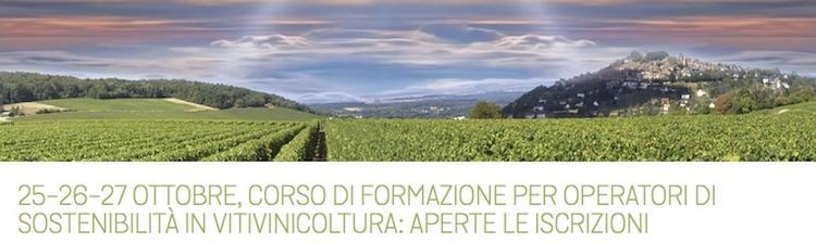 20171025-viva-sostenibilita-vitivinicoltura.jpg