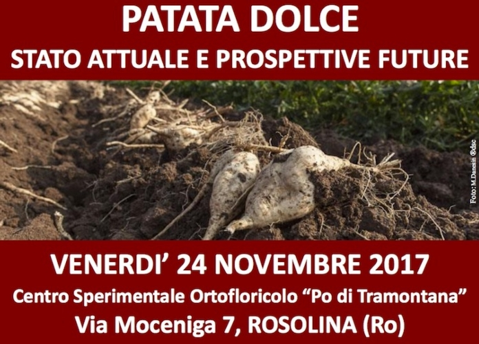 20171124-patata-dolce.jpg