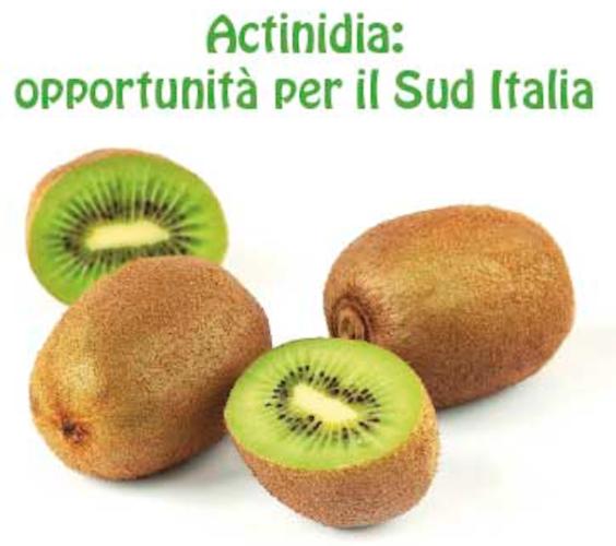 20180201-actinidia-opportunita-fonte-alsia