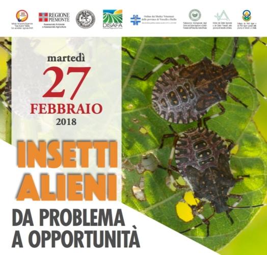 20180227-insetti-alieni-da-problema-a-opportunita