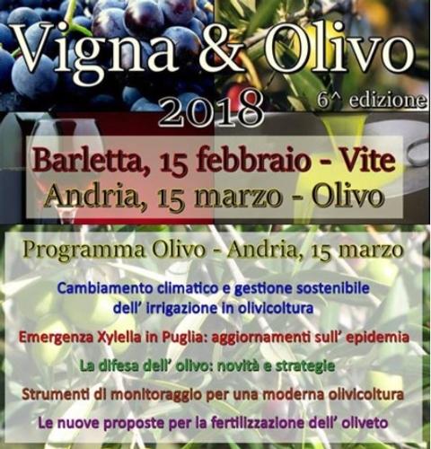 20180315-olivo-vigna-e-olivo