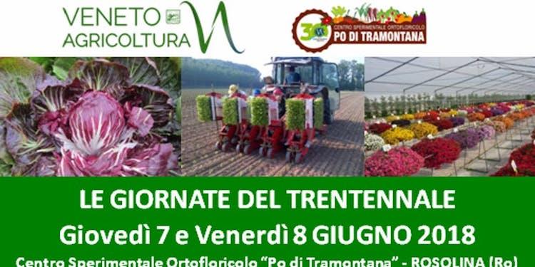 20180607-giornate-del-trentennale-ortofloricoltura-fonte-veneto-agricoltura.jpg