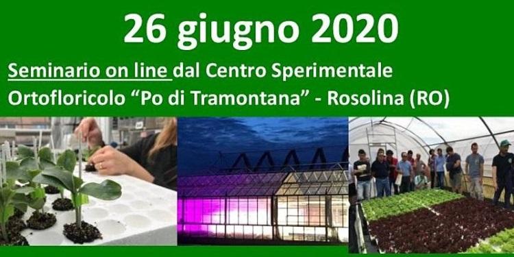 20200626-giornata-aperta-orticoltura