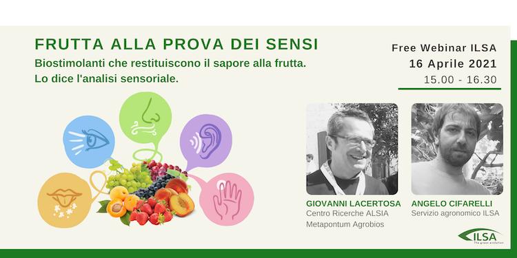 Frutta alla prova dei sensi - le news di Fertilgest sui fertilizzanti
