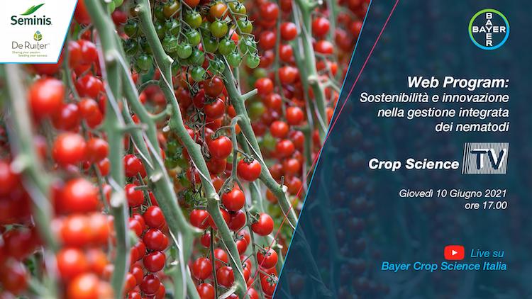20210610-bayer-crop-science-tv-pomodoro-nematodi-fonte-bayer.png