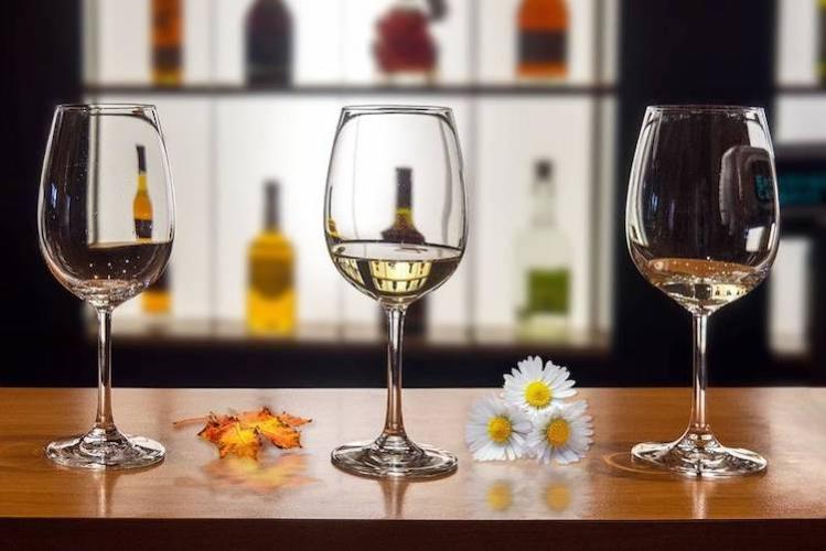 20211108-evento-vino-calici-vini-resistenti-fonte-fondazione-mach