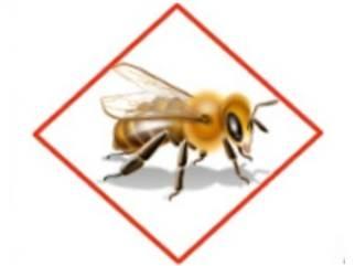 6c8643787-130815-bees3-linkblocksdesktoptease