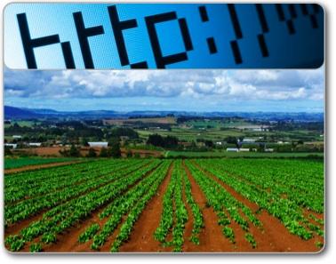 Agricoltura-Internet-20070308