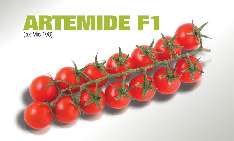ArtemideBianco.jpg
