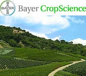 BayerCrop-logo-e-sfondo-sito