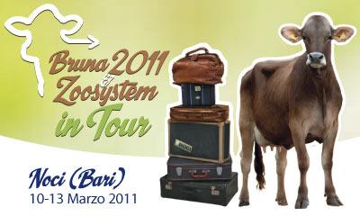 CopAOW_20101207_Bruna2011
