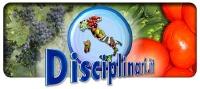 Disciplinari_200