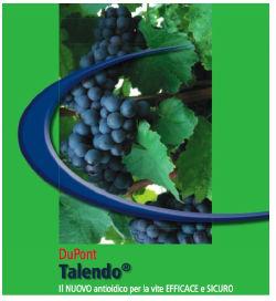 DuPont-Talendo-Brochure.jpg
