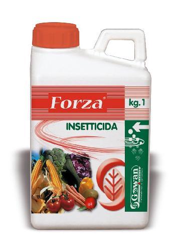 Forza_ok-OK.jpg