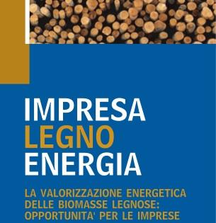 Impresa-Legno-Energia-logo