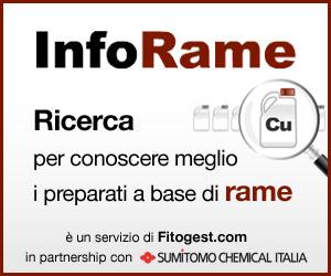 InfoRame-fitogest-agrofarmaci-fitofarmaci-agricoltura-rame.jpg