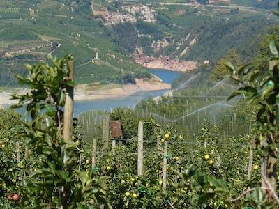 Irrigazione2_iasma