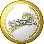 LogoMedio.JPG