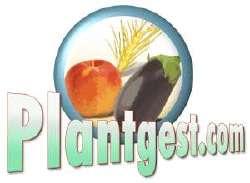 Logo_PlantGestCom_250