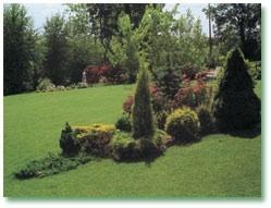 Giardini Moderni Immagini : Giardini moderni e frutti antichi un convegno tra tradizione e