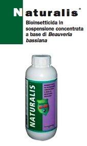 Naturalis-intrachem-bio-italia