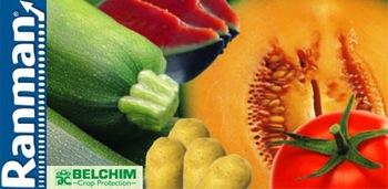 Ranman-belchim-logo