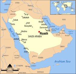 Riyadh-arabia-saudita-convegno-anve-punteruolo-rosso-delle-palme-febbraio2010