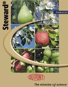 Steward-pomacee-brochure-difesa-ricamatori-e-altre-avversita.jpg